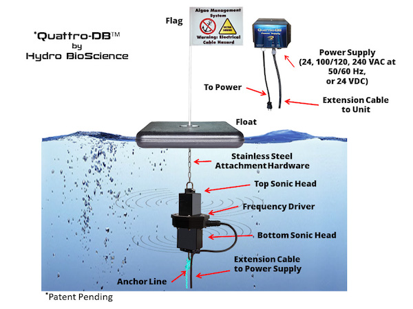 Diagram of algae killer introduction to electrical wiring diagrams game changer the quattro db ultrasound algae control system is rh pondalgaesolutions org photobioreactor diagram algea cell diagram ccuart Image collections